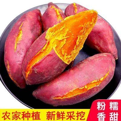【现挖现发】沙地西瓜红薯新鲜红蜜薯蔬菜2/5/9斤批发番薯地瓜