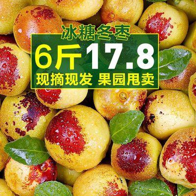 77804/山东沾化现摘冬枣新鲜5斤脆甜枣子新鲜大枣子应季水果批发价1/6斤
