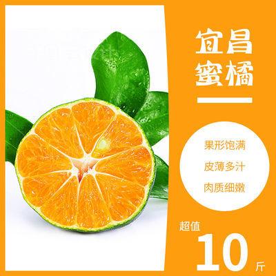 正宗宜昌蜜桔现摘新鲜橘子青皮桔子整箱应季孕妇水果薄皮多汁无籽