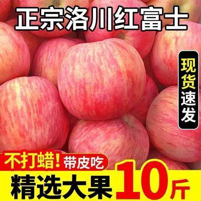 77741/正宗陕西洛川苹果10斤特级红富士脆甜整箱新鲜苹果应季水果批发价