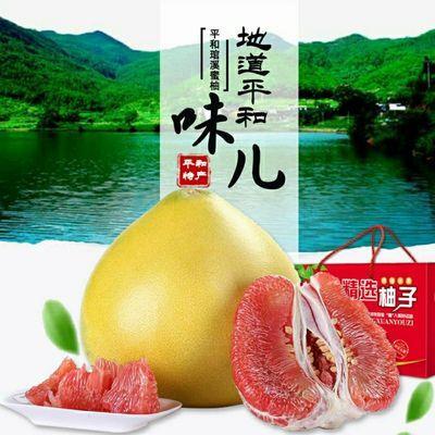 福建平和琯溪红心蜜柚38年老树爆甜柚子新鲜孕妇水果汁多皮薄