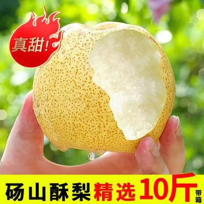 砀山酥梨新鲜水果10斤整箱批发现摘百年青梨苹果梨子白3斤梨批发