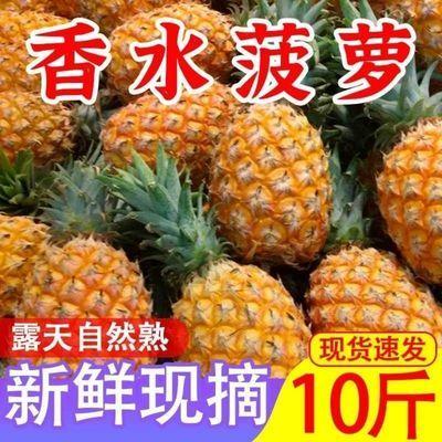 【低价促销】新鲜大菠萝香水菠萝香甜脆手撕菠萝凤梨云南菠萝