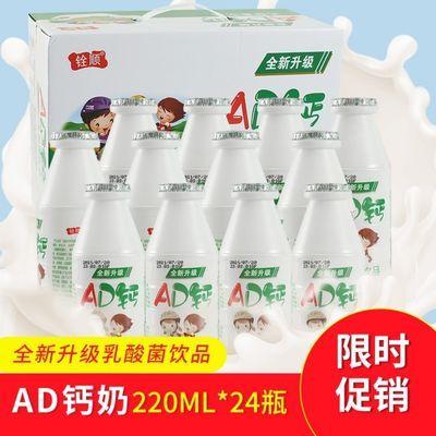 AD钙奶儿童网红甜品饮料酸奶风味果味饮品学生早餐下午茶点零食