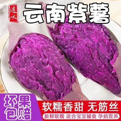 (粉糯香甜)新鲜沙地紫薯板栗地瓜番薯红苕蜜薯大紫薯整箱批发蔬菜