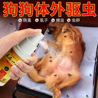 87689/【虱疥克星】驱虫喷雾狗狗猫咪宠物猫狗体外驱虫去虱子一扫而光