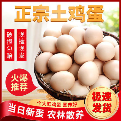 20枚土鸡蛋正宗农家散养土鸡蛋孕妇宝宝营养蛋新鲜草鸡蛋整箱批发
