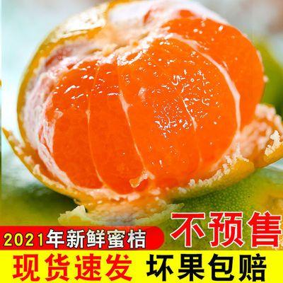 现摘甜蜜桔青皮橘子桔子无字薄皮当季孕妇新鲜水果整箱批发包邮