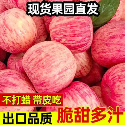 【2021新果】红富士苹果当季应季新鲜苹果5/10斤冰糖心现摘批发