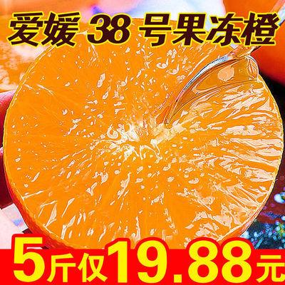 【超低价】四川眉山爱媛38果冻橙甜橙子水果新鲜爱媛38号整箱批发