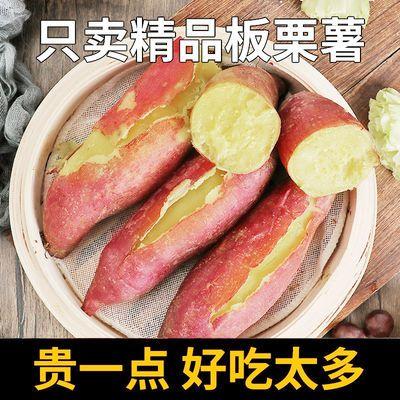 【新鲜超甜】黄心红薯软糯香甜板栗番薯正宗农家沙地种植蜜薯批发