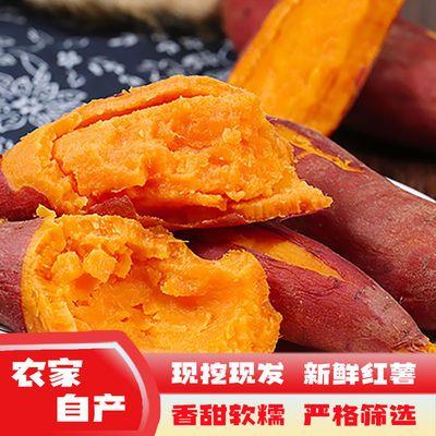 新鲜现挖红薯黄心红番薯超甜糖心蜜薯农家自种西瓜红山芋地瓜批发