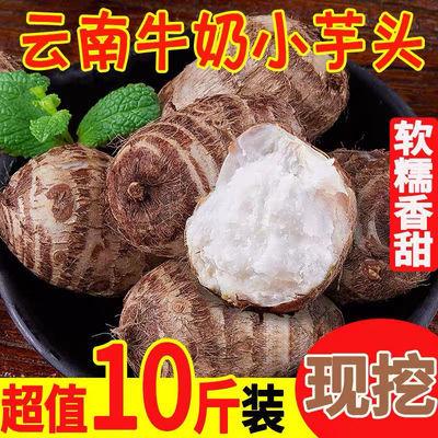 云南特产新鲜香沙芋农家芋艿小芋头牛奶毛芋头非荔浦10斤红芽香芋