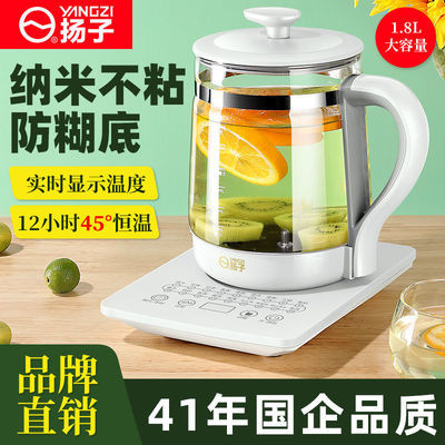 91005/扬子养生壶多功能玻璃全自动烧水花茶壶煮茶器煎药壶电热水壶家用