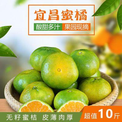 【现摘正宗宜昌蜜桔】薄皮无籽渣青皮橘子黄桔子孕妇水果·批发价