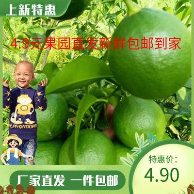 现摘青柠檬5斤新鲜水果当季批发香水一级皮薄多汁泡水整箱包邮