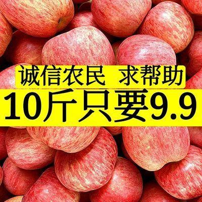 【农民直发】苹果陕西脆甜红富士当季丑新鲜冰糖心水果3-10斤批发