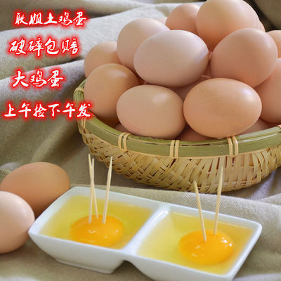 耿姐散养鸡蛋正宗农家新鲜土鸡蛋笨鸡蛋现捡虫草鸡蛋柴鸡蛋鸡蛋