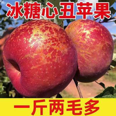 【冰糖心苹果】盐源丑苹果现摘当季新鲜水果脆甜整箱批发3/5/10斤
