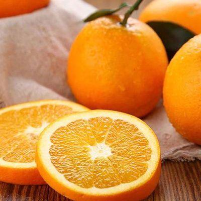 中国长寿之乡贵州罗甸高山脐橙