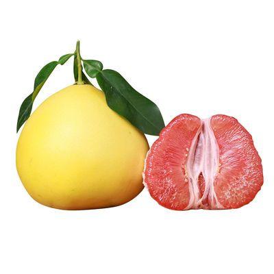 【福利专享】福建红心蜜柚新鲜水果整件批发当季柚子