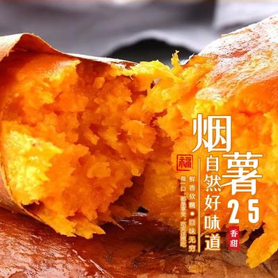 【21年新蜜薯】沙地蜜薯红番薯板栗地瓜新鲜现挖软糯香甜油甜度高