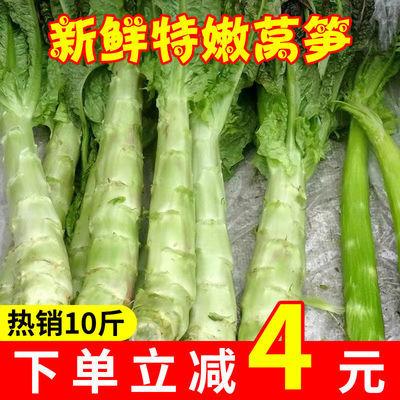 新鲜莴笋农家自种当季蔬菜青笋莴苣蔬菜特产应季现摘时令蔬菜批发