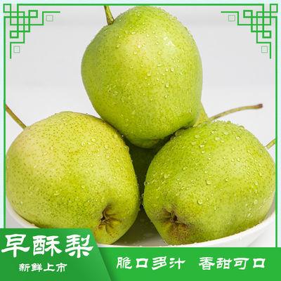 东北水果特早酥梨苹果梨5斤10斤当季新鲜水果产地现摘现发包邮