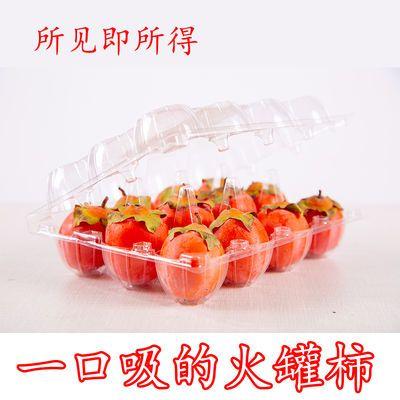 新鲜水果爆甜迷你小柿子野生火罐柿可以一口吸的珍珠软柿子非火晶