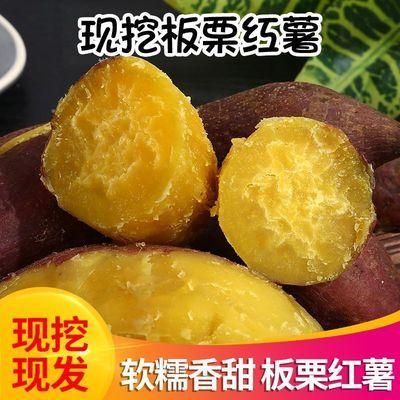 现挖新鲜板栗红薯沙地蜜薯农家红皮番薯地瓜红苕粉面甜2斤5斤10斤