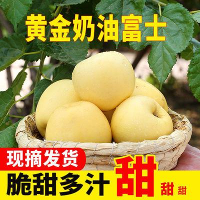 烟台正宗黄金奶油富士苹果新鲜当季水果脆甜多汁冰糖心5斤新果
