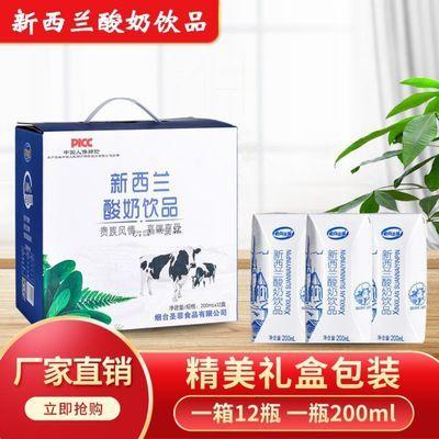 93229/【仅特惠一天】100%正品新日期酸奶饮品厂家直销高端美味发酵营养
