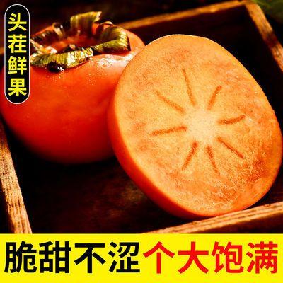 现摘现发巧克力脆柿陕西硬柿子新鲜水果当季整箱诗词特产阳丰甜柿