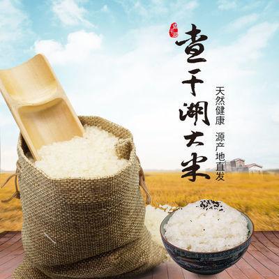 東北五常稻花香大米真空包裝10斤新長粒香圓粒香米包郵批發價