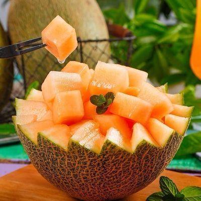 03【超甜超大】哈密瓜新疆爆甜瓜孕妇水果应季新鲜水果正宗火焰瓜