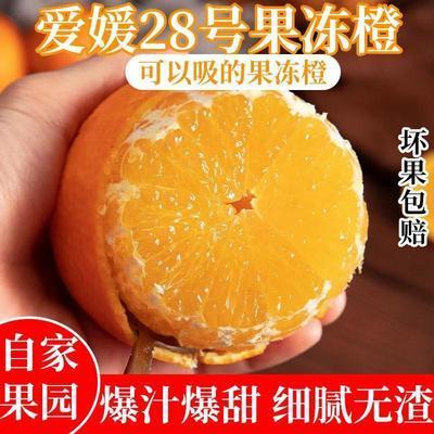 91703/四川爱媛38号果冻橙当季橙子水果新鲜超甜薄皮手剥橙子冰糖橙脐橙
