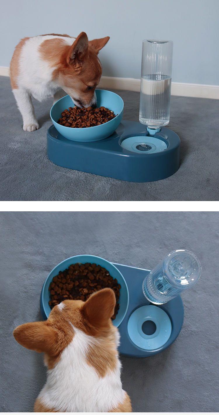 可爱猫狗碗折叠狗猫盆小狗小猫幼猫泰迪宠物狗狗猫猫咪用品喝水