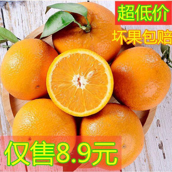 【夏橙上新】橙子新鲜夏橙冰糖脐橙 大果当季果冻橙天然绿色