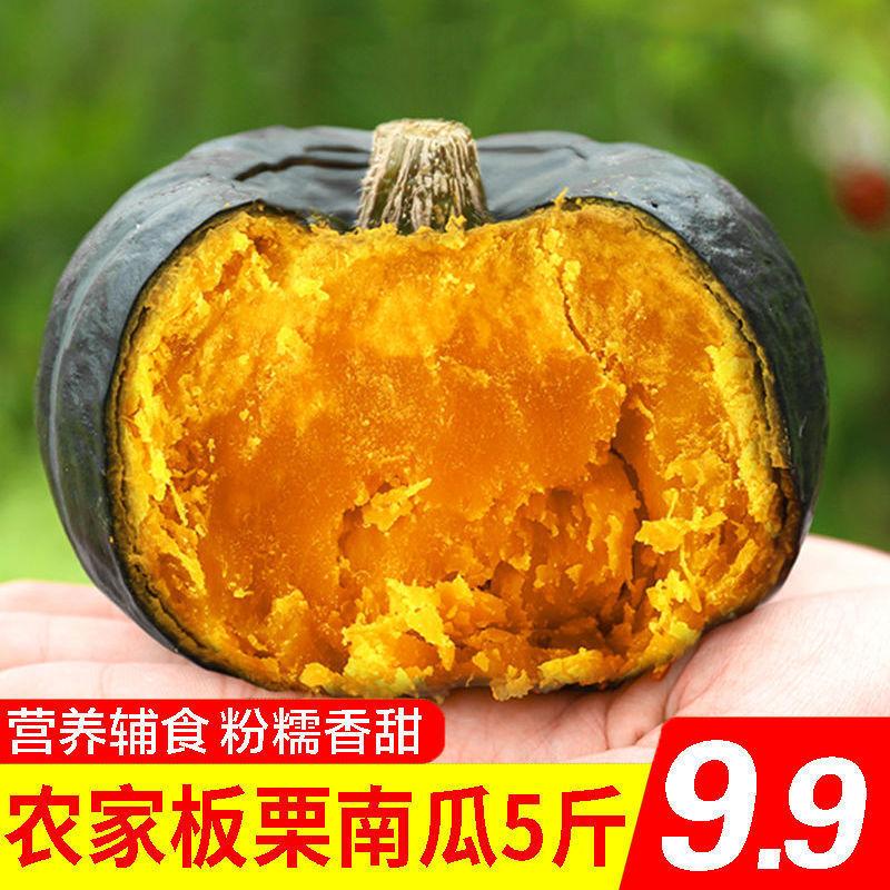 现摘沙漠板栗南瓜香甜粉糯宝宝辅食非贝贝南瓜新鲜蔬菜5/10斤包邮