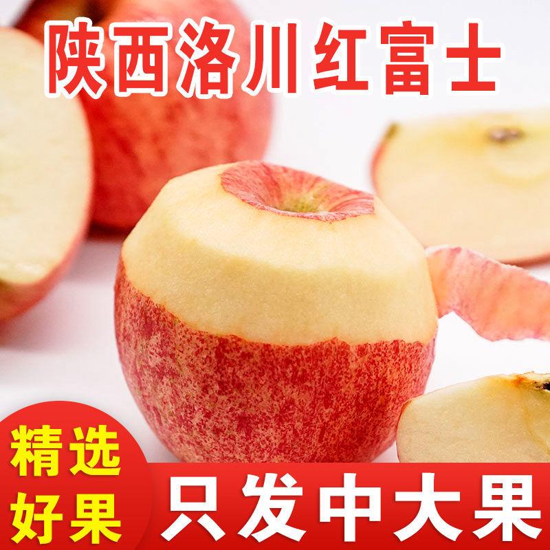 75867-陕西洛川红富士苹果水果新鲜5/10斤脆甜多汁不打蜡带皮吃整箱批发-详情图