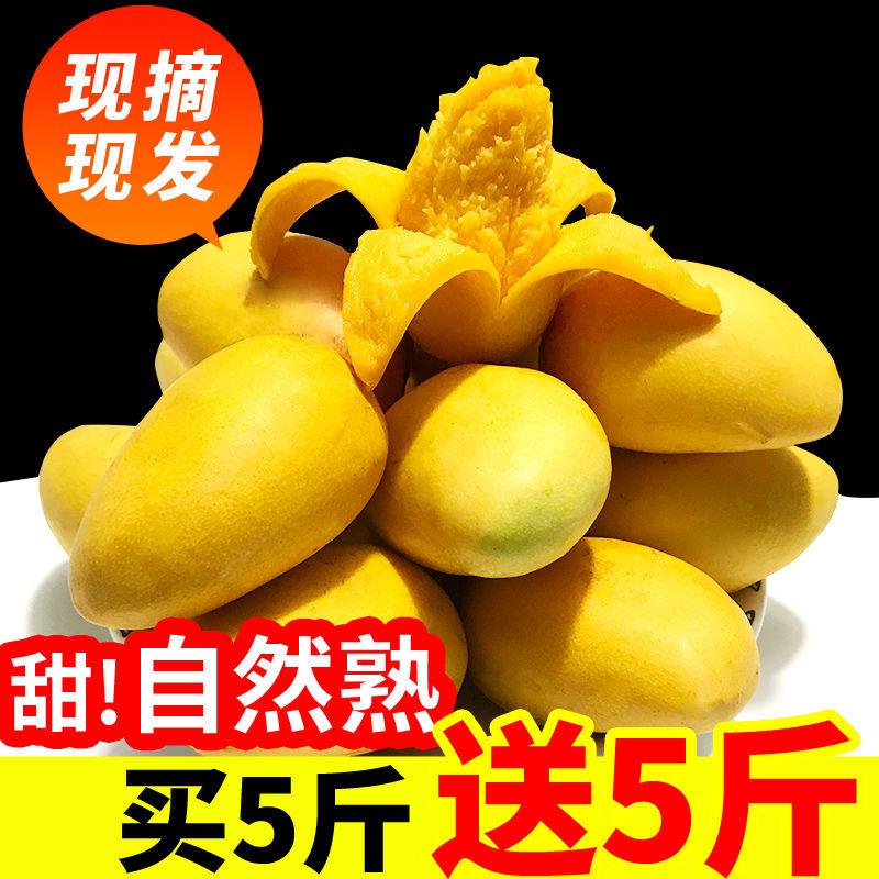 广西百色小台农芒果小核水果新鲜整箱应季孕妇水果批发非贵妃芒