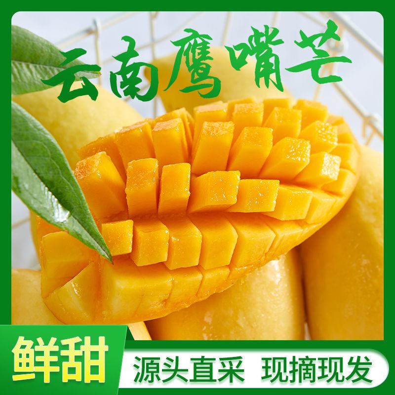 云南黄金芒果批发大芒果鹰嘴芒果3-5斤装当季新鲜水果套袋