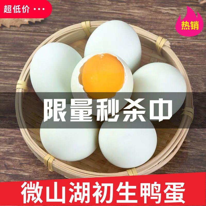 【初生鸭蛋】新鲜鸭蛋土鸭蛋生鲜鸭蛋农村散养微山湖特产初生蛋