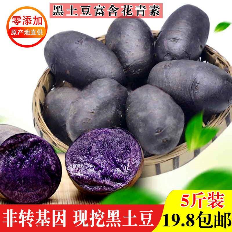 新鲜现挖黑土豆农家自产马铃薯黑洋芋黑金刚黑美人包邮主图5