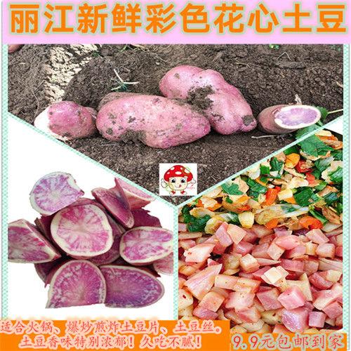 土豆新鲜彩心云南丽江彩心土豆叫花心洋芋光滑无虫眼现挖现卖