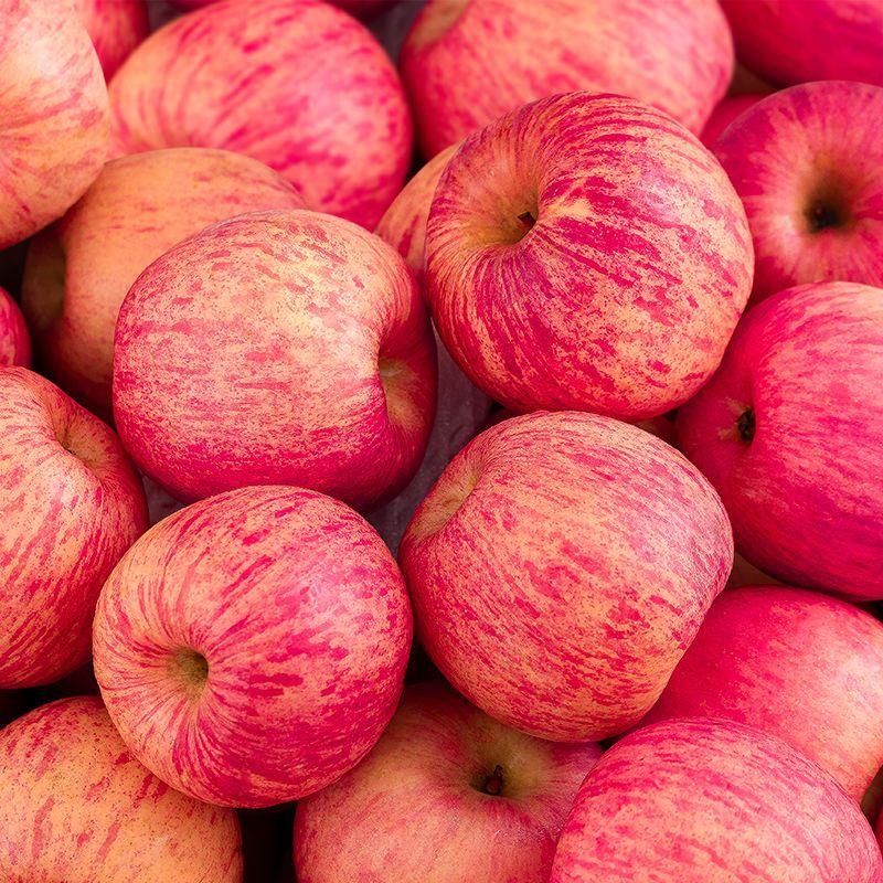 【顺丰现货】烟台红富士苹果5斤果径80mm以上新鲜脆甜不打蜡苹果