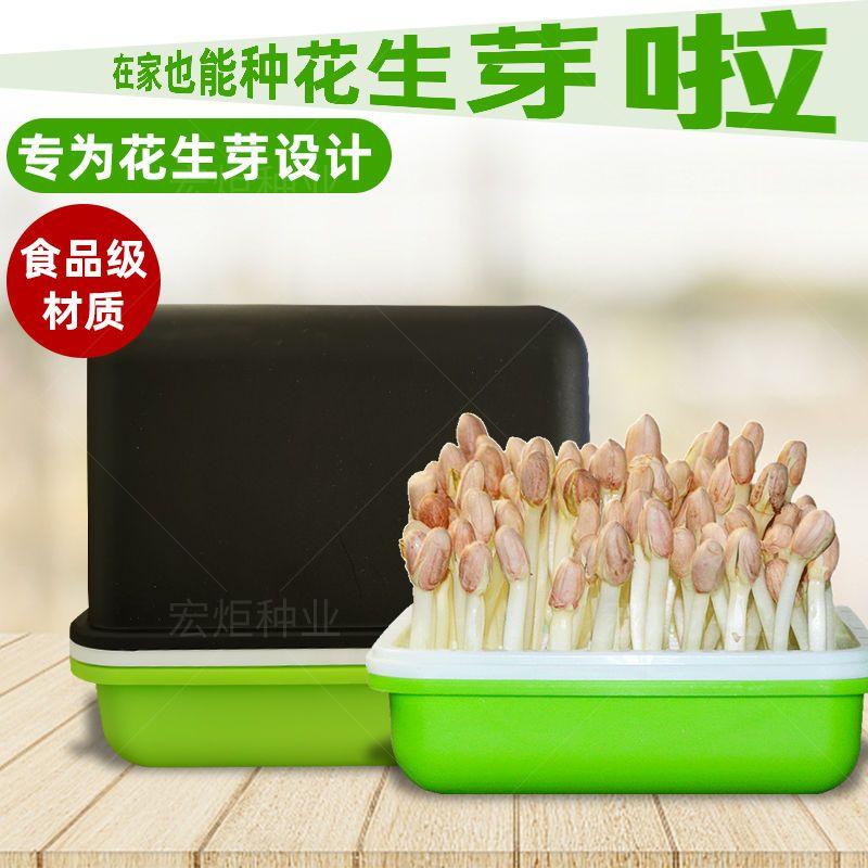 花生芽发芽神器花生芽水培箱花生苗种植盒专用花生育苗盘盆盒子