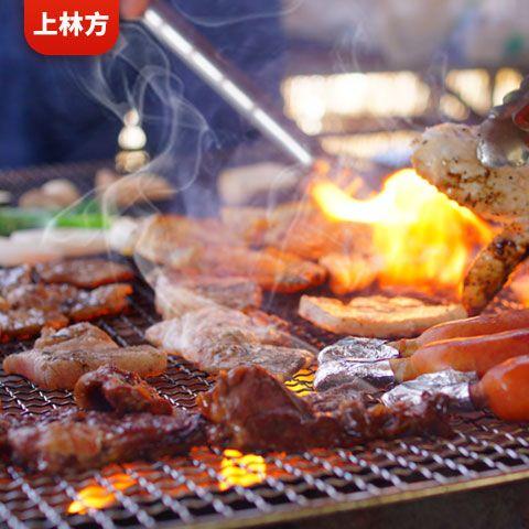 上林方烧烤炉烧烤架子家用户外木炭烤肉折叠全套烧炭大小野外工具
