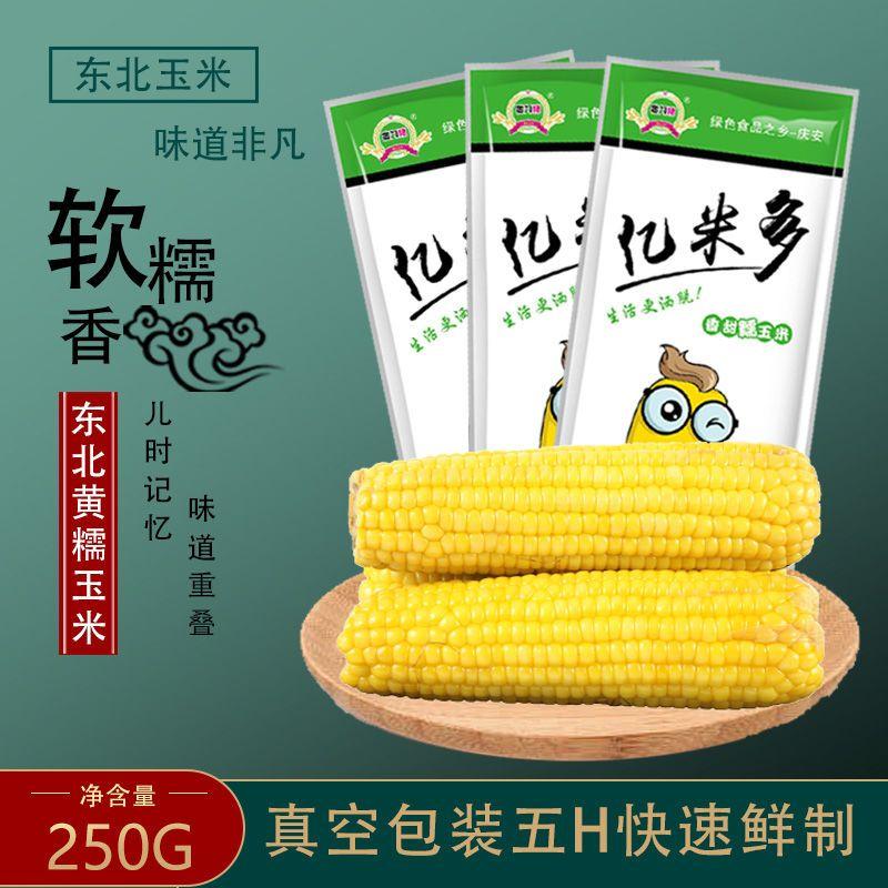 东北 黑龙江新鲜玉米棒 甜糯玉米 真空装 东北苞米软糯鲜甜