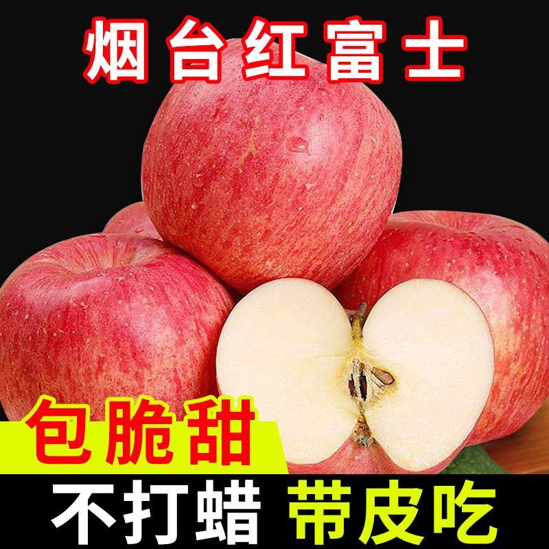 正宗果园烟台红富士苹果当季新鲜水果不打蜡3/5/10斤整箱批发包邮